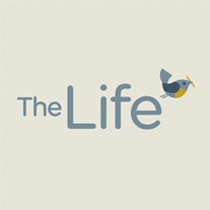 [Brand design] The Life SNS